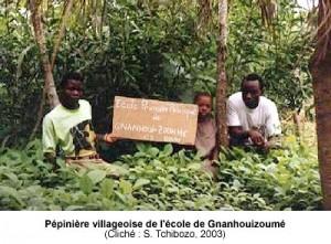 Pépinière villageoise de l'école de Gnanhouizoumé