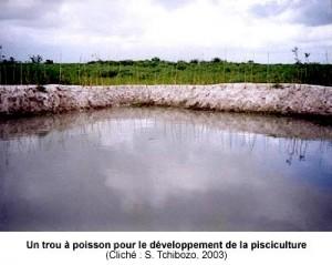 Un trou à poisson pour le développement de la pisciculture
